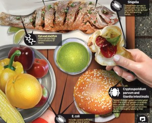 food-illness