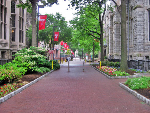 temple-university-master-of-science-in-health-informatics