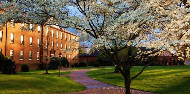 king-university-online-mba-with-healthcare-management-specialization
